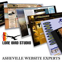 Asheville Website Design by Lone Bird Studio