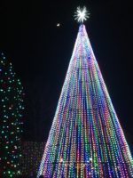 Tree of lights